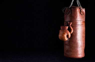 Tiger Gaming Boxing